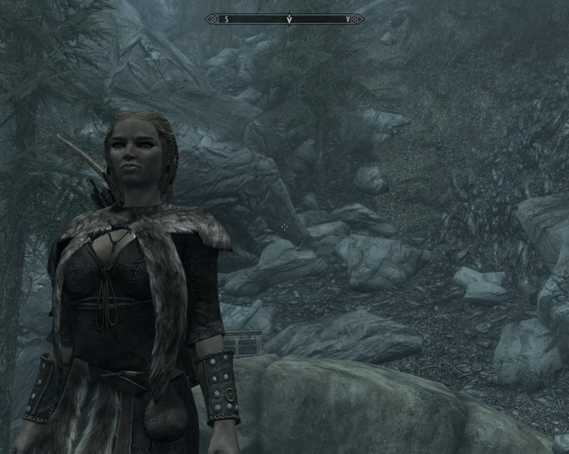 Portait of the first Leona when she spawned into skyrim