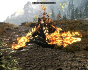 Fallen dragon's skin turns to fire and begins to melt away.