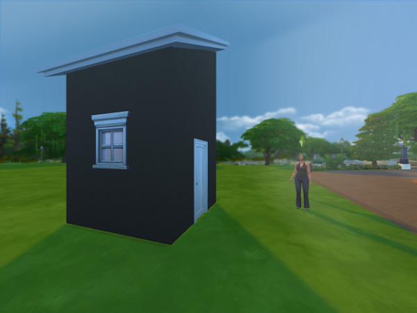 Lemongrass stands next to a tiny 3x3 house with a slanted roof..