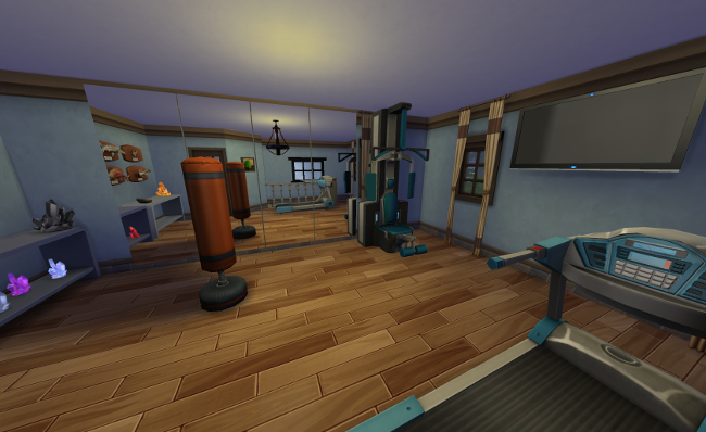 Mirror walls, exercise equipment and fishing trophies decorate this small room.