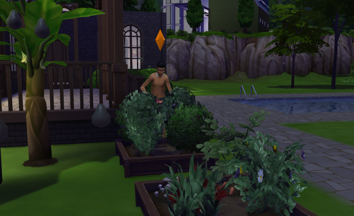 Austin watering plants in the middle of the night.