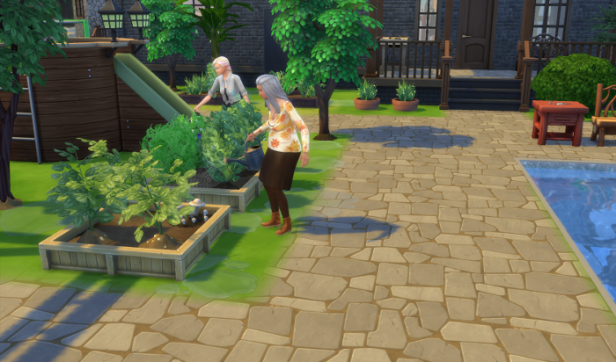 Dylan and Carmen work together to keep the garden alive.