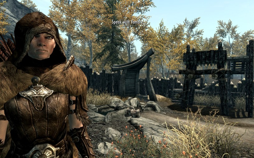 Skyrim Multiple Followers Mod