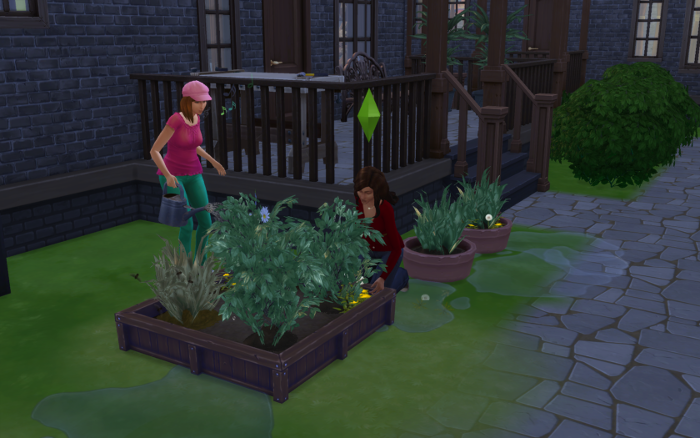 Nebula and Nova working in the (smaller) garden.