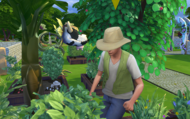 Bane works in his garden, weeding. Shelby is in the background, because I love that cow plant.