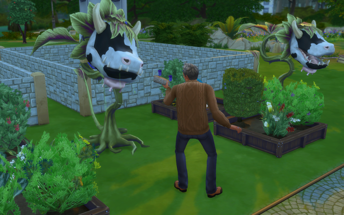 Michel feeds Shelby meat so the cowplant won't eat any sims.
