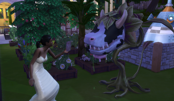 Connie - at night and still in her wedding dress - feeds Shelby.
