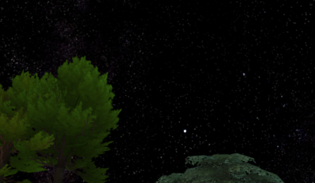 The sky at night in Granite Falls. Trees and stars as far as the eye can see.