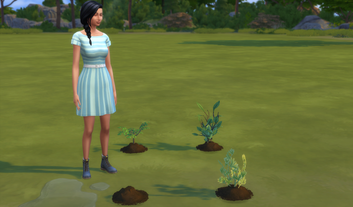 Chana's garden is literally three small plants and one mound of freshly watered dirt. But she seems happy.