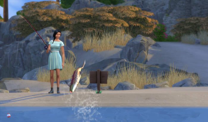 Chana is watching a salmon leap out of the water. It does not fall for her bait.