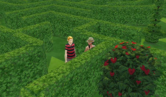 The maze stretches behind Arutro and Chana who are looking speculatively at the heart bush - you know what they're about to do.