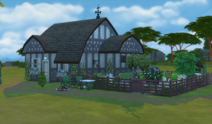 The Huffman cottage - Old cottage style with ivy and plaster walls. And Chana's garden.