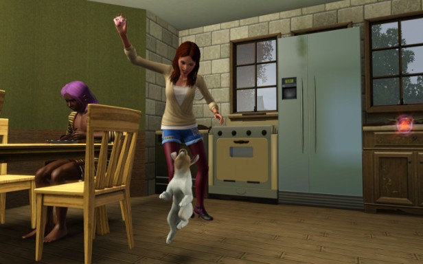 Cherie and Razta play in the kitchen. Razta is caught mid-leap.