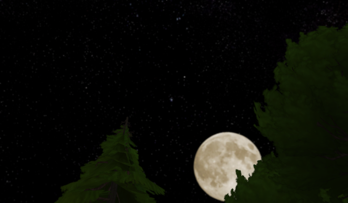 The night sky, stars, a full moon, and the tips of evergreen trees.