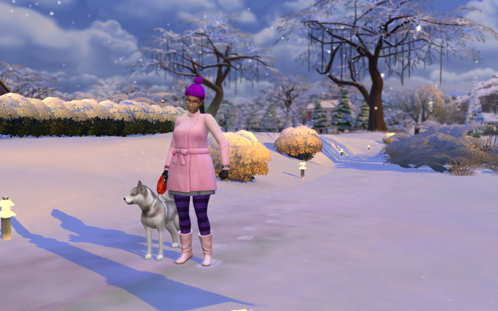 It's winter in Willow Creek and Emery takes her large husky looking dog, King for a walk.