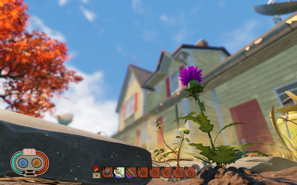A giant thistle next to a rock - with a huge yellow house in the background.